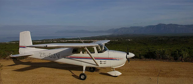 AFRICAN WINGS - Whale Watching Flights & Flying Safaris